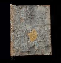 book with gingko leaf 2